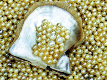 南珠异彩 第四届北海国际珍珠节图片